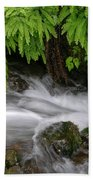 Wahkeena Falls One Beach Towel