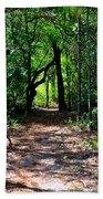 Walk In The Woods Beach Towel
