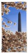 Washington Monument Cherry Trees Beach Towel