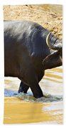 Water Buffalo Beach Towel