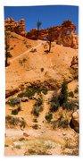 Water Canyon Dragon Beach Towel