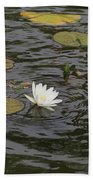Water Circles On The Lily Pond Beach Towel