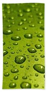 Green Card. Macro Photography Series Beach Towel