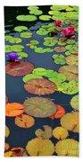 Water Lilies I Beach Sheet