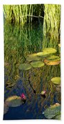 Water Lilies Reflection Beach Towel