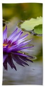 Water Lily Kissing The Water Beach Towel