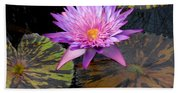 Water Lily Magic Beach Towel