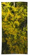 Water Reflection Abstract Autumn 1 F Beach Towel