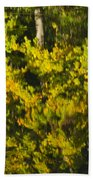 Water Reflection Abstract Autumn 1 G Beach Towel