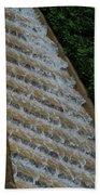 Water Steps 1 Beach Towel
