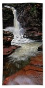 Waterfall Ricketts Glen Beach Towel