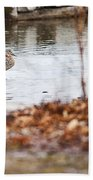 Waterfowl Calisthenics Beach Towel