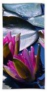 Waterlilies In Bright Sunlight Beach Towel