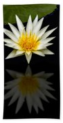 Waterlily And Reflection Beach Towel