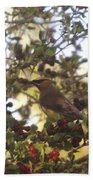 Wax Wing In A Berry Tree  Beach Towel