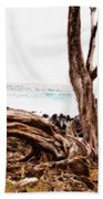 Weathered Beauty Beach Towel
