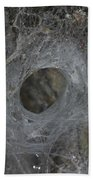 Web Of A Funnel-web Spider Beach Towel