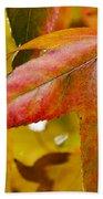 Weeping Red Leaf Beach Towel