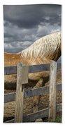 Western Palomino Horse In Alberta Canada No.1335 Beach Towel