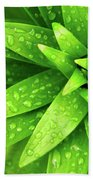 Wet Foliage Beach Towel