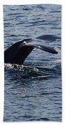 Whale Dive Beach Towel