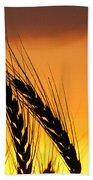 Wheat At Sunset Beach Towel