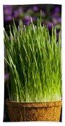 Wheat Grass Beach Towel