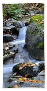 Whisketown Stream In Autumn Beach Towel