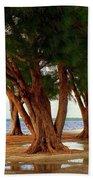 Whispering Trees Of Sanibel Beach Towel by Karen Wiles