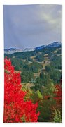 Whistler Red Beach Towel