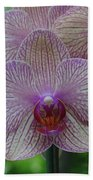 White And Pink Orchid Beach Towel