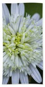 White Aster Beach Towel