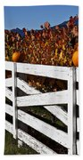 White Fence With Pumpkins Beach Towel