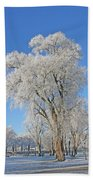 White Frost Tree Beach Towel