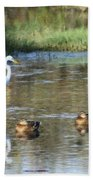 White Heron And Baby Ducks Beach Towel