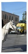 White Horse In Bethlehem Street Beach Towel