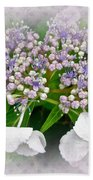 White Lace Cap Hydrangea Blossoms Beach Towel
