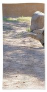 White Rhino And Ibex Beach Towel