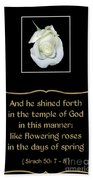 White Rose With Bible Verse From Sirach Beach Towel