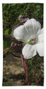 Small White Morning Glory Beach Towel
