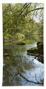 Whitewater River Spring 10 Beach Towel