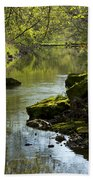 Whitewater River Spring 11 Beach Towel