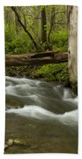 Whitewater River Spring 18 Beach Towel