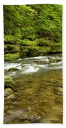 Whitewater River Spring 8 C Beach Towel