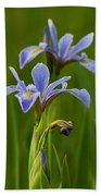 Wild Blue Flag Iris Beach Towel