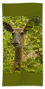 Wild Doe Beach Towel