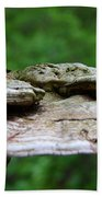 Wild Fungi Beach Towel