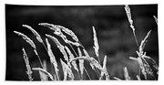 Wild Grass Beach Towel