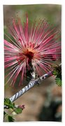 Wild Pink Fairy Duster Beach Towel