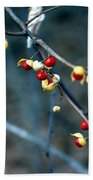 Wild Red Berries Out Of The Shell Beach Towel